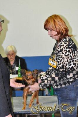 Наши результаты на  82 INTERNATIONALE DOG SHOW   в Люксембурге 27.03.2011