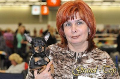 37 Internationale Rassenhunde-Ausstellung in Nürnberg