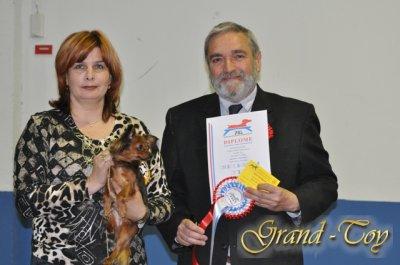 Unsere Ergebnisse auf INTERNATIONALE DOG SHOW 82 in Luxemburg.