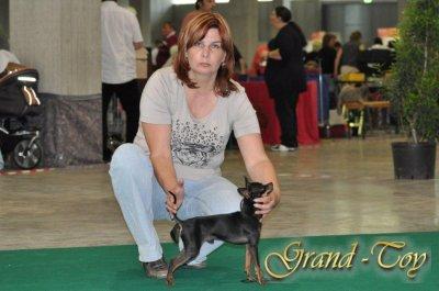 Unsere Ergebnisse auf INTERNATIONALE DOG SHOW in St.Gallen (Schweiz)