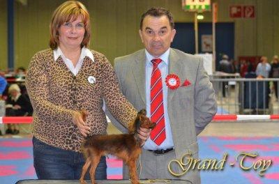 Unsere Ergebnisse auf 84 INTERNATIONALE DOG SHOW  in Luxemburg am 01.04.2012.