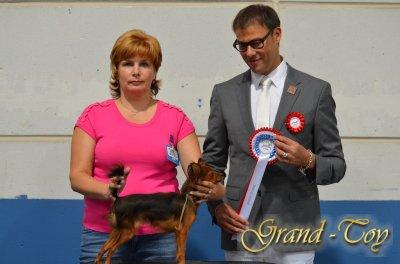 Unsere Ergebnisse auf  INTERNATIONALE DOG SHOW 85 in Luxemburg am 01.09.2012.